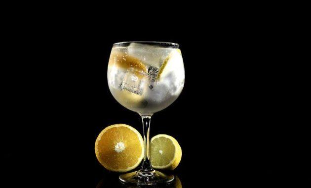 Receita de Gin Fizz