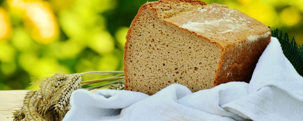 Receita de pão vegano econômico Tudogostoso
